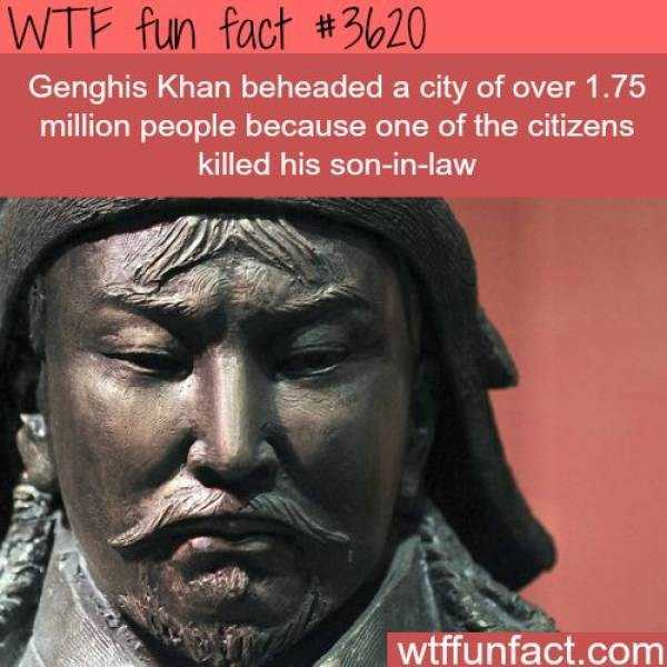 fun-facts (14)
