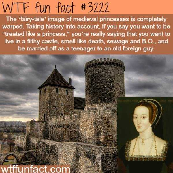 fun-facts (20)