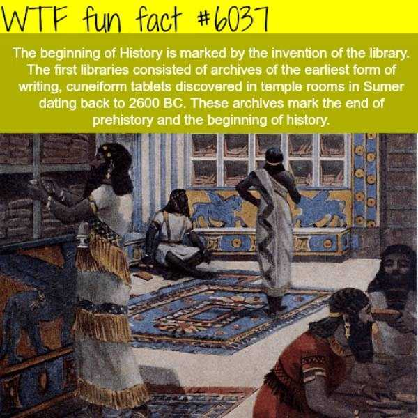 fun-facts (23)