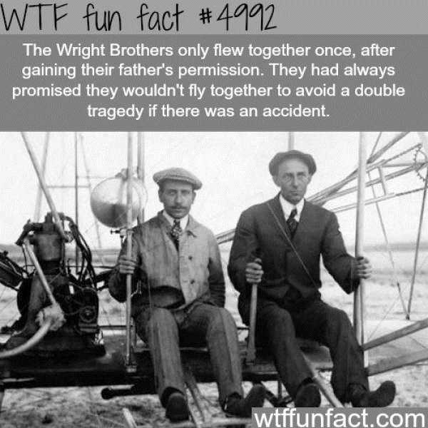 fun-facts (3)
