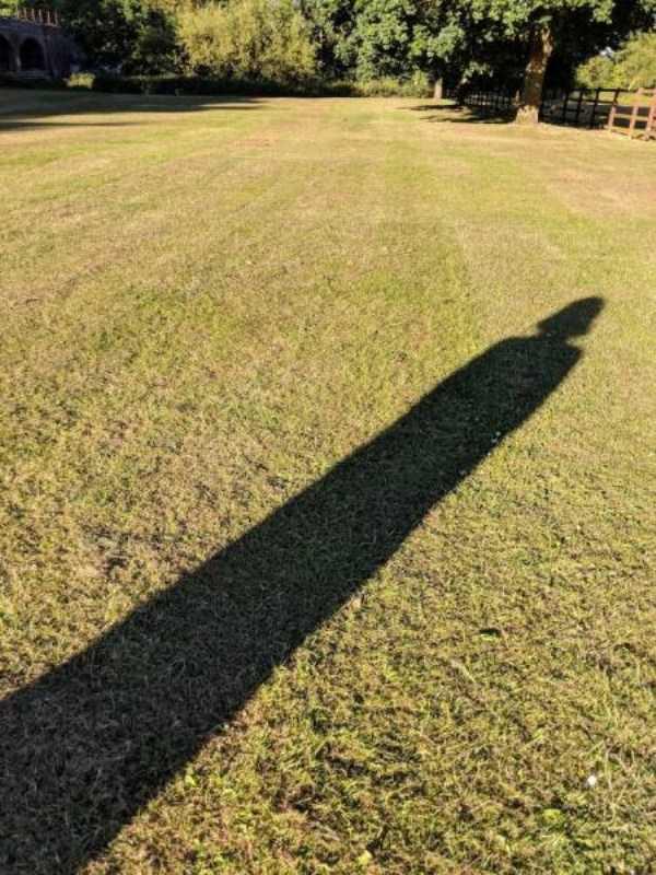funny-shadows (34)