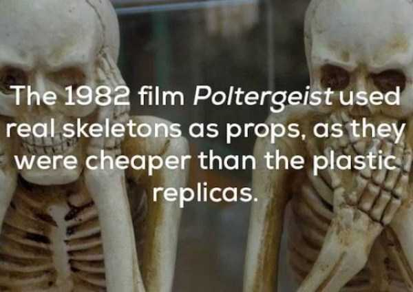 scary-facts (1)