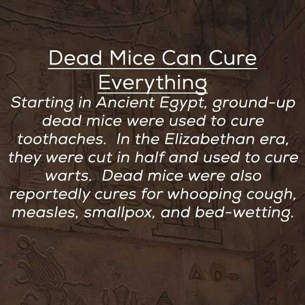 stupid-ancient-remedies (3)