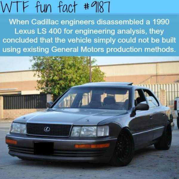 fun-facts (32)