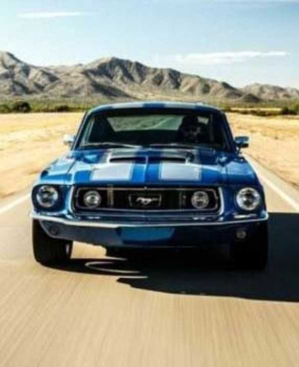 muscle-cars (9)