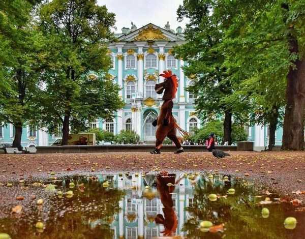 wtf-russia (24)