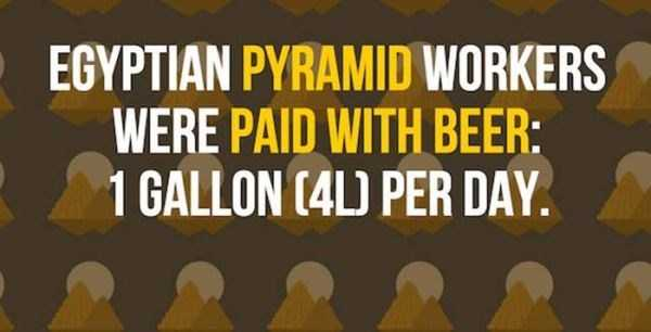 beer-facts (5)