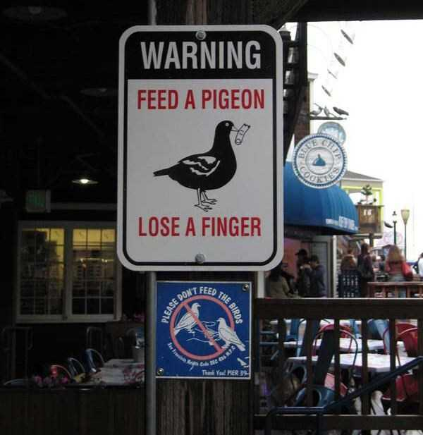 confusing-signs (31)