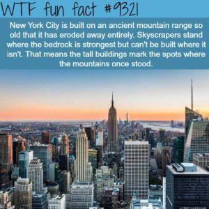 random-facts (37)