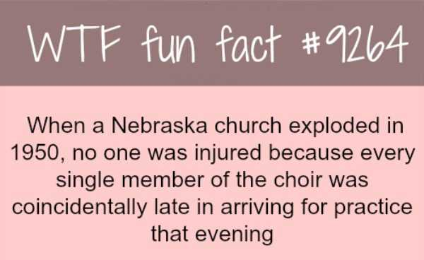 random-fun-facts (7)