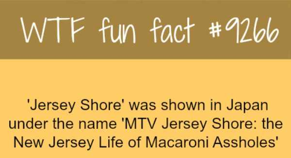 random-fun-facts (9)