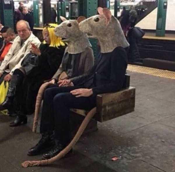 strange-images-public-transportation (26)