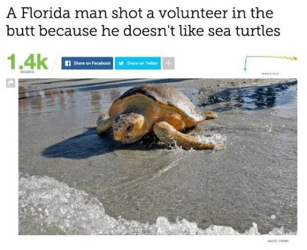 only-in-florida-15