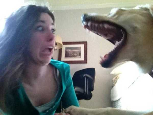 perfectly-timed-pics (51)