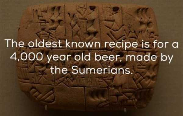 beer-facts-3