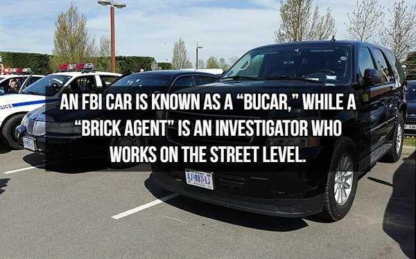 fbi-facts-4